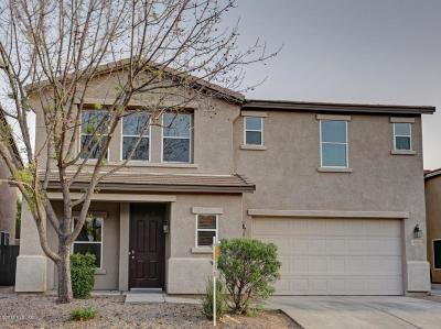 Pima County Single Family Home For Sale: 4176 E Babbling Brook Drive