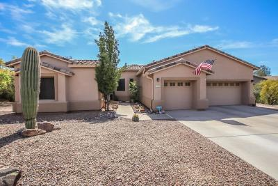 Oro Valley Single Family Home For Sale: 11648 N Desert Holly Drive