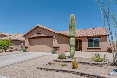 Green Valley Single Family Home For Sale: 1660 N Rio La Junta