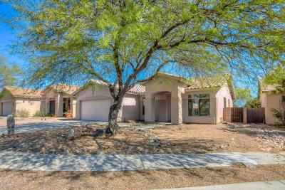 Tucson Single Family Home For Sale: 4252 W Calva Draw Place