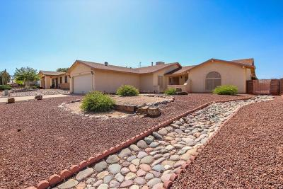 Pima County Single Family Home For Sale: 6814 N De Chelly Loop