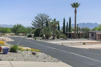 Pima County, Pinal County Townhouse Active Contingent: 1385 S Desert Meadows Circle