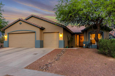 Tucson Single Family Home For Sale: 9232 N Brave Drive