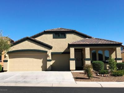 Tucson Single Family Home For Sale: 9922 N Crook Lane