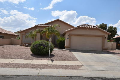 Pima County Single Family Home For Sale: 11311 N Eagle Landing Place