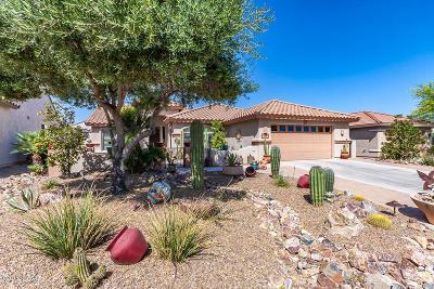 Quail Creek (1-306) Single Family Home For Sale: 959 N Turquoise Vista Drive