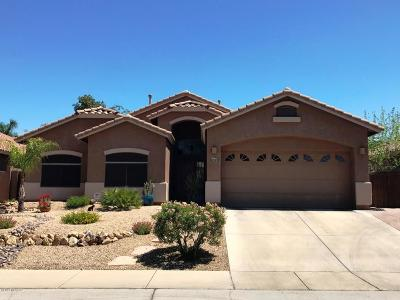 Tucson Single Family Home Active Contingent: 7472 N Bradstreet Drive