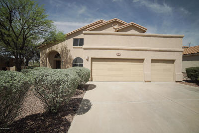 Pima County Single Family Home For Sale: 12791 N Meadview Way
