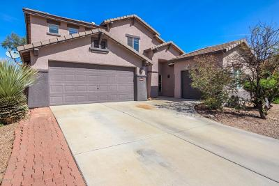 Tucson Single Family Home For Sale: 9511 N Stonebrook Drive