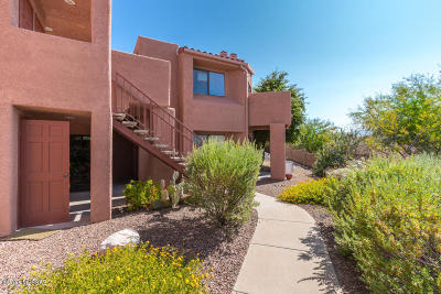 Tucson Condo For Sale: 5051 N Sabino Canyon Road #2150