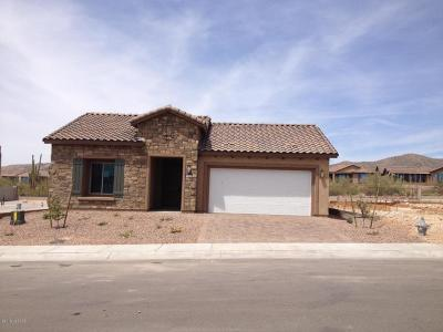 Marana Single Family Home For Sale: 7102 W Cape Final Trail