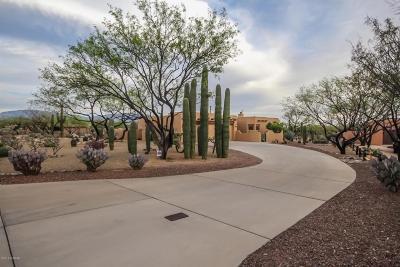 Tucson Single Family Home For Sale: 10500 E Placita Guanajuato