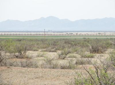 Cochise County Residential Lots & Land For Sale: 440 Acres Hwy 191 At Allen Road