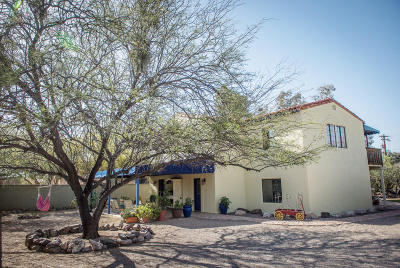 Tucson Single Family Home For Sale: 1925 E Greenlee Road