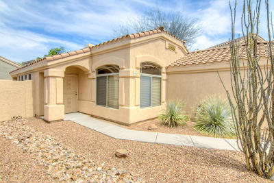 Pima County, Pinal County Single Family Home For Sale: 2406 N Emerald Lake Court