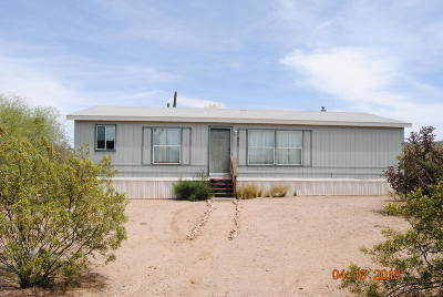 Pima County, Pinal County Manufactured Home For Sale: 7408 N Walter Drive
