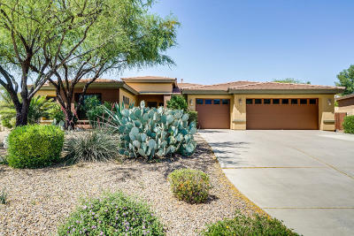 Tucson Single Family Home For Sale: 11933 N Grape Ivy Place