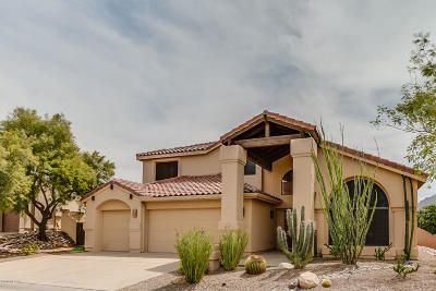 Tucson Single Family Home For Sale: 10810 N La Quinta Drive