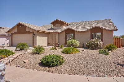 Tucson Single Family Home For Sale: 8033 S Carbury Way