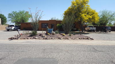 Pima County Single Family Home For Sale: 1301 W Newton Drive