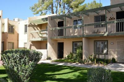 Pima County, Pinal County Condo For Sale: 842 S Langley Avenue #207