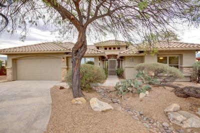 Pima County Single Family Home For Sale: 10793 E Grass Spring Place