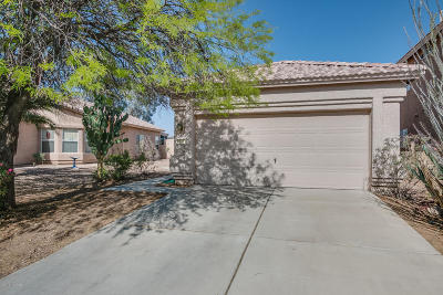 Tucson Single Family Home For Sale: 9333 N Painted Sky Drive
