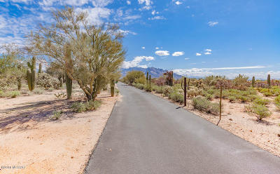 Pima County Residential Lots & Land For Sale: 2670 W Oasis Springs Ct