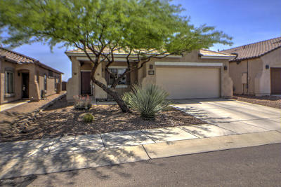 Pima County, Pinal County Single Family Home For Sale: 14455 S Avenida Castano