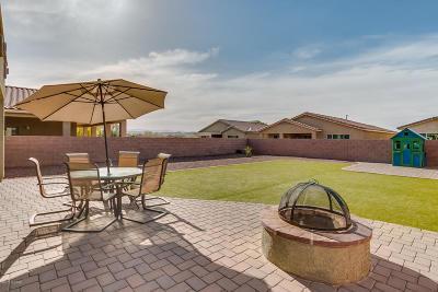 Sahuarita Single Family Home For Sale: 1067 E Empire Canyon Lane