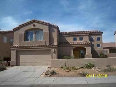 Pima County, Pinal County Single Family Home For Sale: 9203 E Desert Cove Circle