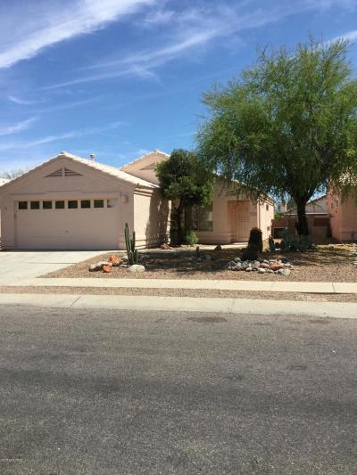 Pima County, Pinal County Single Family Home For Sale: 2384 W Silver River Way