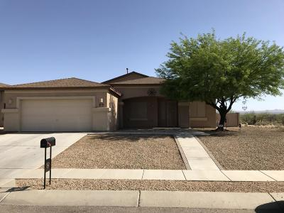 Pima County, Pinal County Single Family Home For Sale: 6813 S Via Diego De Rivera