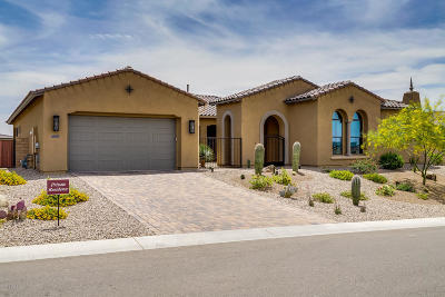 Marana Single Family Home For Sale: 14110 N Crooked Creek Drive