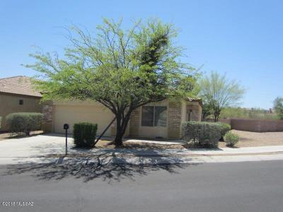 Tucson Single Family Home For Sale: 1697 S San Todaro Place