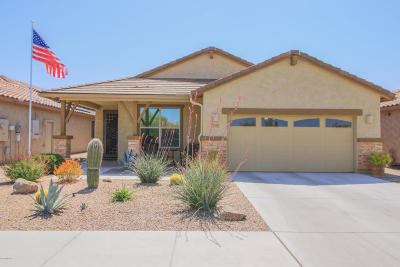 Marana Single Family Home For Sale: 12392 N Summer Wind Drive
