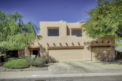 Pima County Single Family Home For Sale: 215 N Eastern Slope Loop