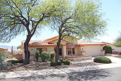 Oro Valley Single Family Home For Sale: 14526 N Sky Trail
