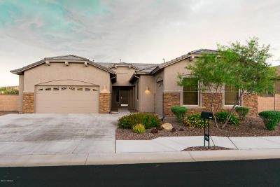 Marana Single Family Home For Sale: 12675 N Sunrise Shadow Drive