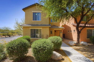 Pima County, Pinal County Single Family Home For Sale: 6047 S Cedar Elm Lane