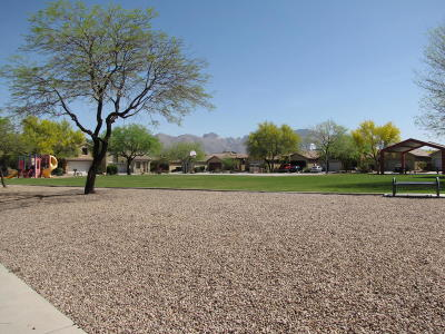 Pima County Single Family Home For Sale: 1630 W Blue Horizon Street