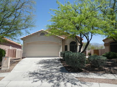Pima County Single Family Home For Sale: 12130 N Jarren Canyon Way