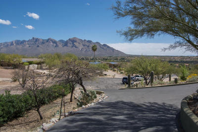 Oro Valley Single Family Home Active Contingent: 10261 Camino Valdeflores