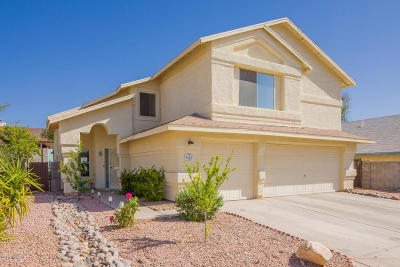 Pima County, Pinal County Single Family Home For Sale: 8960 N Obsidian Place