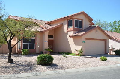 Pima County Single Family Home For Sale: 3027 W Sawmill Spring Trail