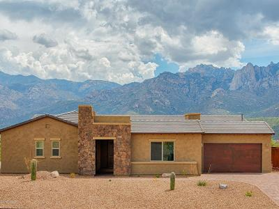 Oro Valley Single Family Home For Sale: 878 E Naranja Road
