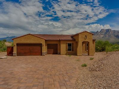 Oro Valley Single Family Home For Sale: 11350 N Ridgeway Village Place