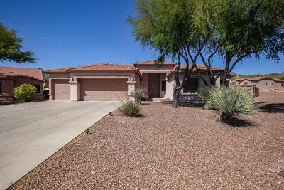 Single Family Home For Sale: 4854 S Placita Joropo