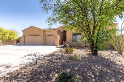 Pima County Single Family Home Active Contingent: 14554 E Desert Plume Court
