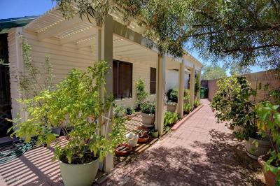 Tucson Single Family Home For Sale: 8581 N Delta Way
